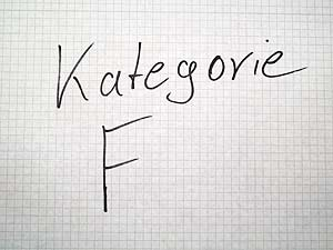 Google Places Kategorie - F
