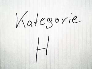 Google Places Kategorie - H