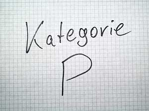 Google Places Kategorie - P