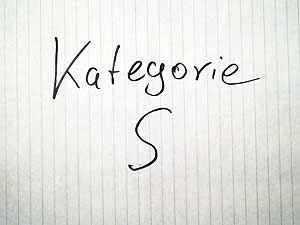 Google Places Kategorie - S