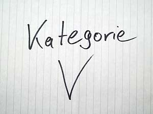 Google Places Kategorie - V
